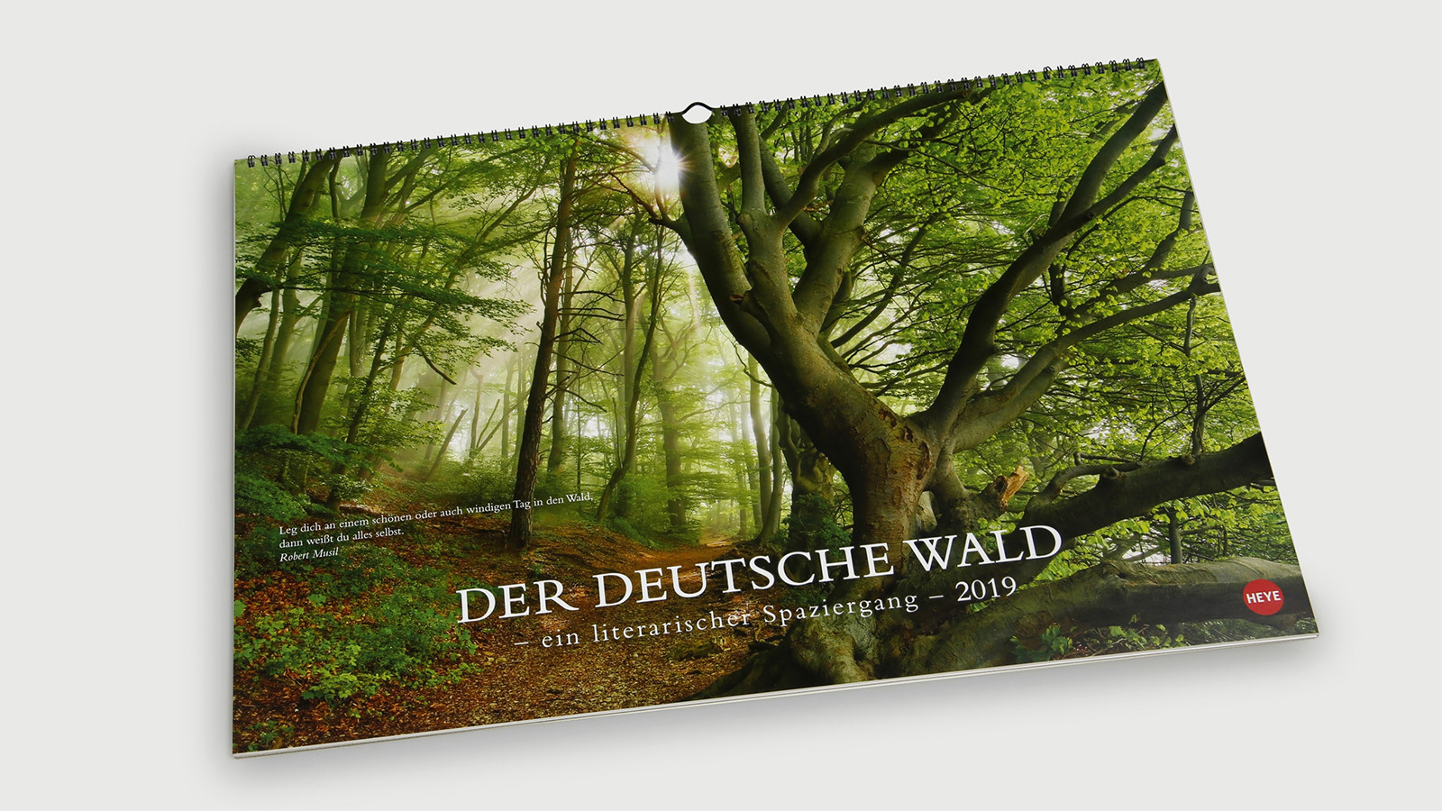 Der_deutsche_Wald